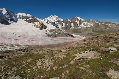 Diavolezza Moutain in the Engadine in summer with view of Piz Palu and Bernina Mountain Group