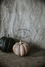 Pumpkin by Gabler