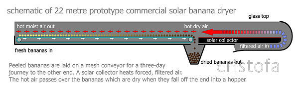 a schematic diagram of how the solar banana dryer works