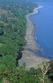 Aerial view of coast and Lowland forest, Vatthe conservation area, Espiritu Santo, Vanuatu, Melanesia