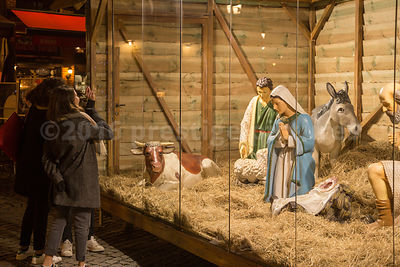 Life Size Nativity Scene outside the Cathedral of Our Lady in Antwerp
