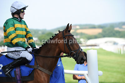 Novices' Handicap Hurdle Race with winner Bold Raider