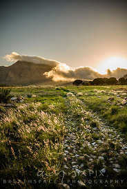 An old overgrown cobbled stone track leading through a grass field towards cloud covered mountains in the distance at sunset.