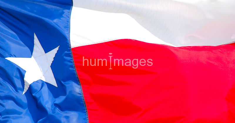 Texas state flag (full frame)