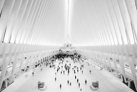 Calatravas Oculus  2017  New York  Photographer Neil Emmerson  £975 inc UK VAT  Edition of 25.