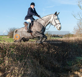 Lucinda Winnington jumping a hedge near the meet - The Quorn Hunt at Swan Lodge 16/12