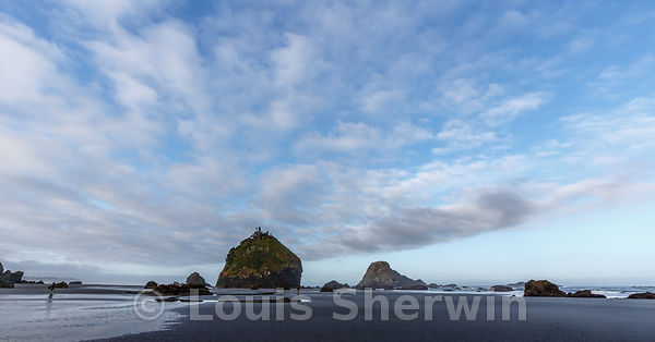 Camel Rock at low tide