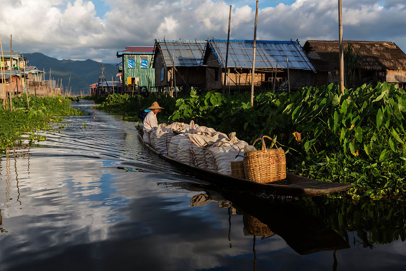 A Traditional Boat Plies a Narrow Channel on Inle Lake in the Late Afternoon