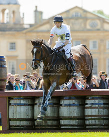 Harry Meade and WILD LONE - Cross Country - Mitsubishi Motors Badminton Horse Trials 2013.