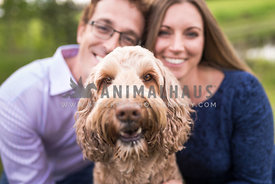 Close up of Smirking Doodle Dog with Couple