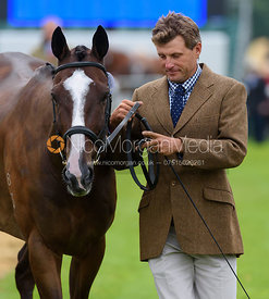 Boyd Martin and STEADY EDDIE at the trot up, Land Rover Burghley Horse Trials 2017