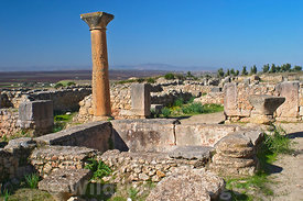 One of the many houses, Volubilis, Morocco; Landscape
