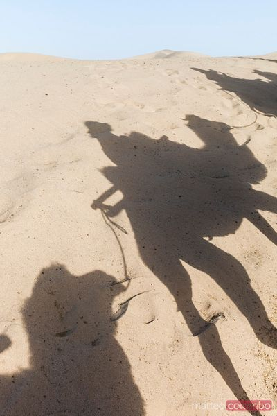 Camel shadow on the sand, Dunhuang, China