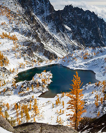 Enchantment Lakes in early winter snow with Larch trees bearing  autumn leaves,   Alpine Lakes Wilderness, Central Cascade ra...
