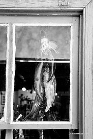 ORNAMENTAL GLASS PEPPERS WINDOW OLD TOWN ALBUQUERQUE NEW MEXICO BLACK AND WHITE VERTICAL