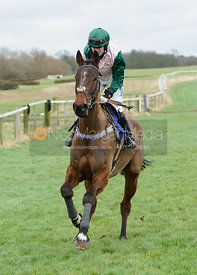 HELPSTON (Gina Andrews) - Race 5 - 9YO and over Conditions - The Cottesmore Point-to-point 26/2
