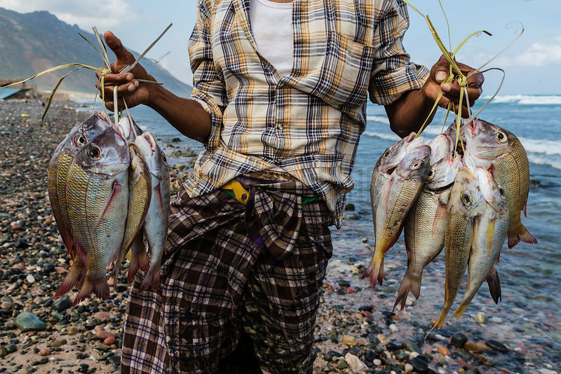 Man Holding Fish at the Hadibo Fish Market