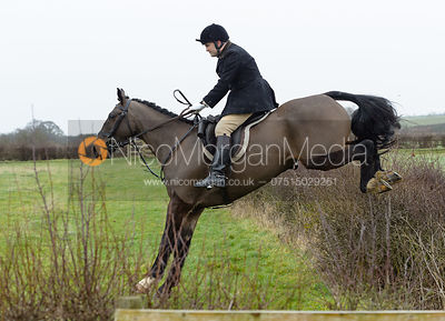 Jeremy Dale jumping a hedge at Sheepwash - The Belvoir at Mount Pleasant