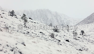 Coire an t-Sneachda appearing monochromatic in fresh snow, Cairngorm Mountains, Scotland, under snow in November
