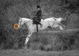 Side Saddle Hedge Jumping