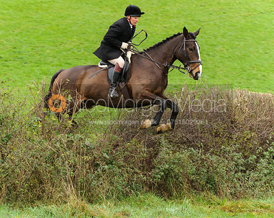 Martin Reason - The Cottesmore Hunt at Tilton on the Hill, 9-11-13