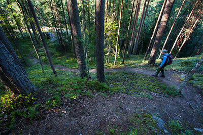 Trail to Hakolanvuori