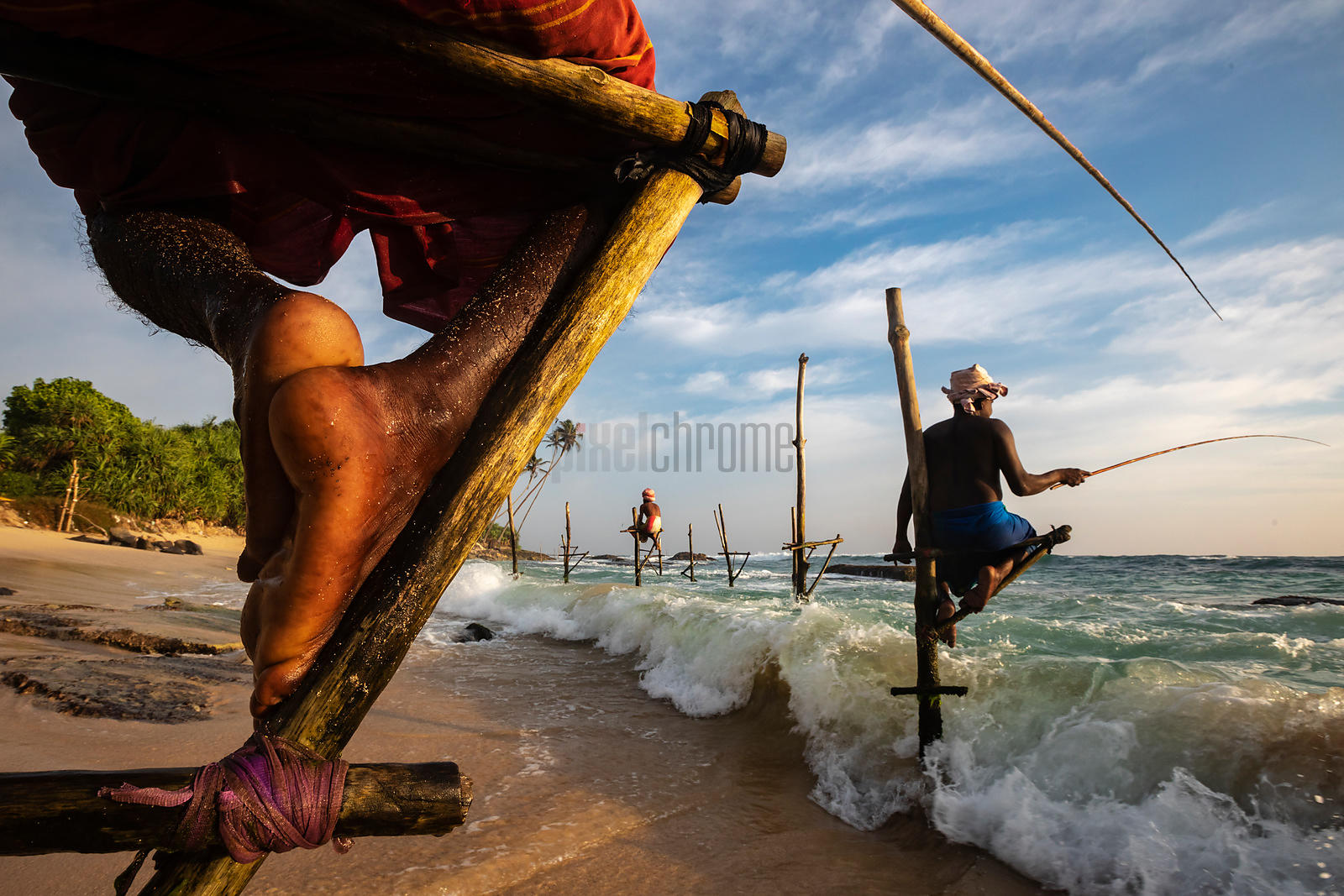 Stilt Fishermen Demonstrate the Traditional Technique for Catching Fish