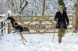 Major Tim Brown - Cottesmore Hound Exercise in Owston Woods