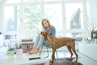 Woman with her dog and digital tablet at home
