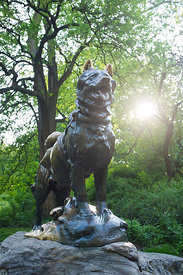 Statue du chien Balto à central park New York, USA / Balto dog statue in central park New York, USA