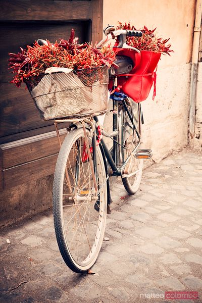 Bicycle with chili basket