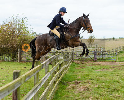 Boogie Machin jumping a hunt jump at Stone Lodge. The Cottesmore Hunt at Tilton