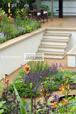 Jardin contemporain en contre-bas. Escalier. Designer : Thomas Hoblyn Design Agency. Hampton Court. Angleterre