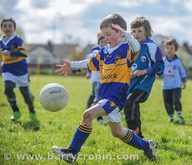 21st April, 2012. Castleknock GFC football nursery, Carpenterstown, Dublin. Pictured is one of the young members of the club ...