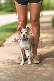 Small dog standing between young ladies feet.