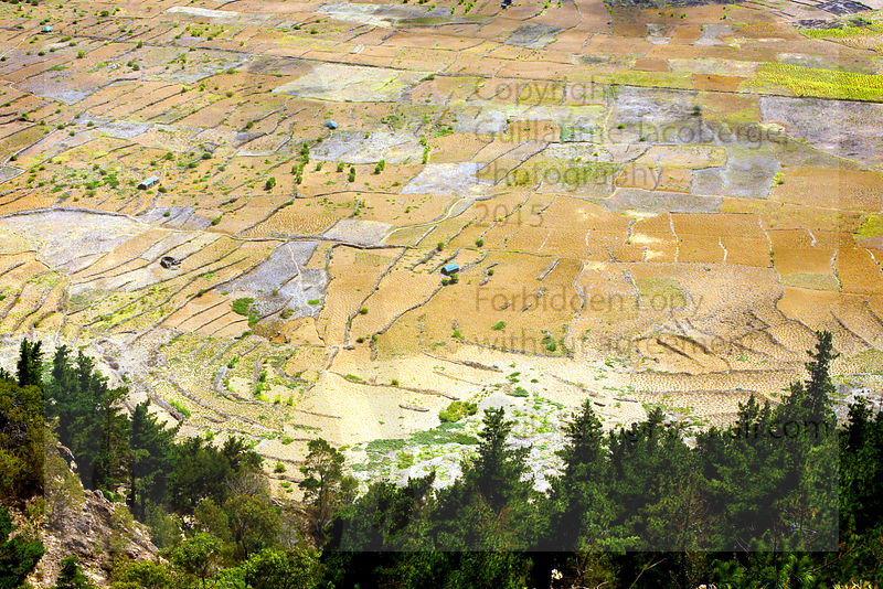 Crater Cultivation