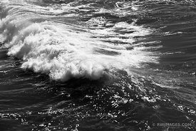OCEAN WAVES PACIFIC BODEGA BAY SONOMA COAST CALIFORNIA BLACK AND WHITE