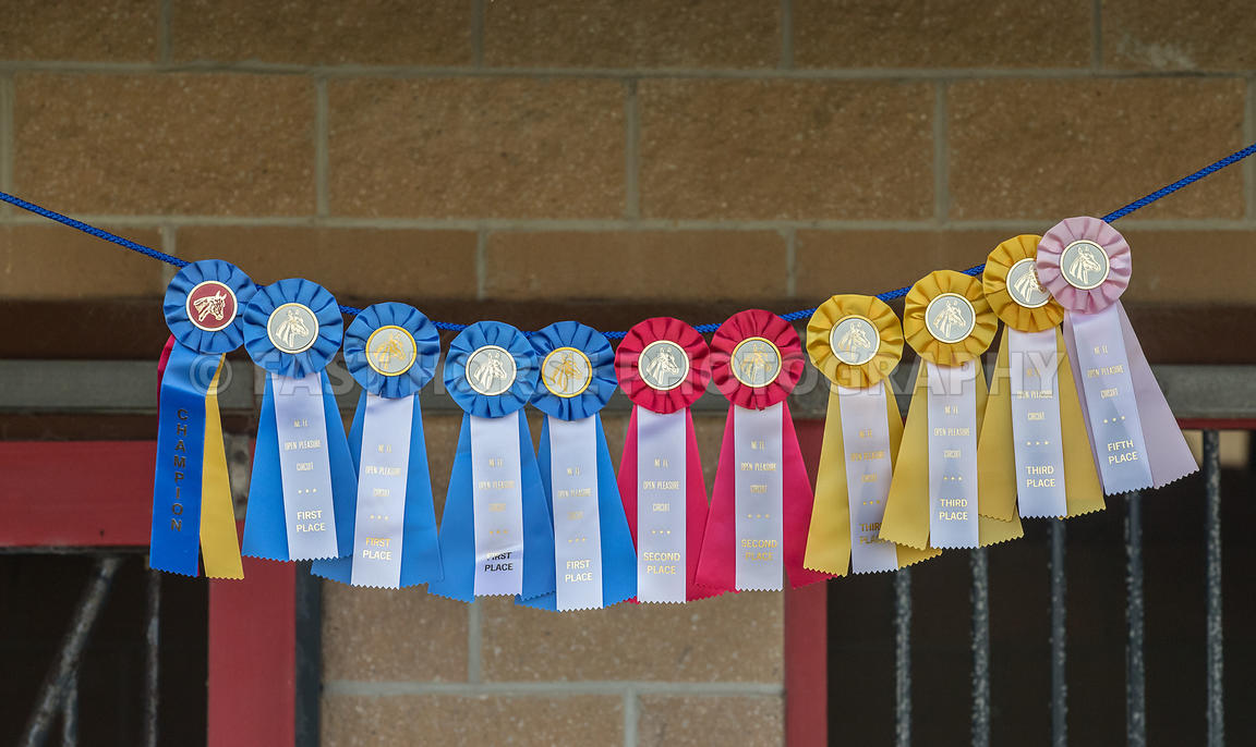 Fast Horse Photography | A colorful display of horse show