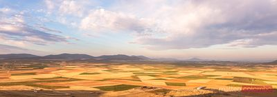 Panoramic of golden fields, La Mancha, Spain
