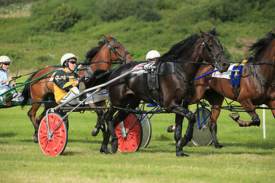 Harness racing or trotting at Tan y Castell. Aberystwyth