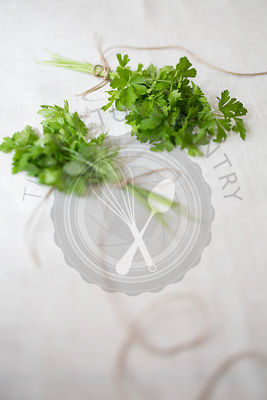 Two bunches of coriander tied with string