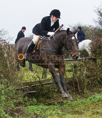 Ruth Atkinson jumping near the new Jubilee Covert - Cottesmore Hunt at Deane Bank Farm 4/12/12