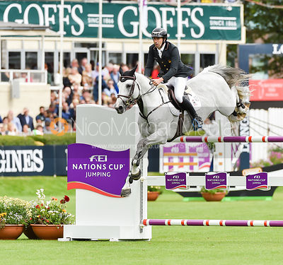 Gerardo Menendez and CASSINO DC - FEI Nations Cup, Dublin Horse Show 2017