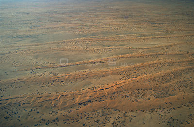Aerial view of dunes in Strzelecki Desert, South Australia