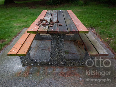 Select Picnic Tables of the Northbound I-5 Custer, Washington Rest Area (5 of 5)