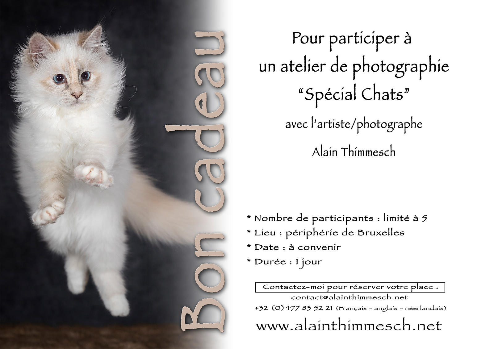 Bon-A4-Paysage-Atelier-Photo-Special-Chats
