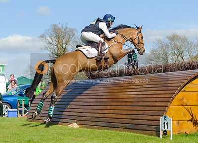 Albert Hermoso Farras and HITO CP - Cross Country - Mitsubishi Motors Badminton Horse Trials 2013.