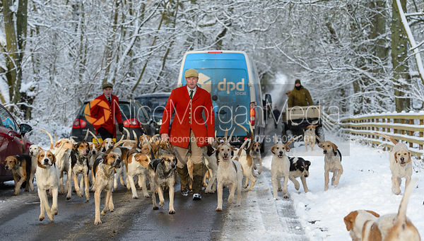Chris Edwards - Cottesmore Hound Exercise in Owston Woods