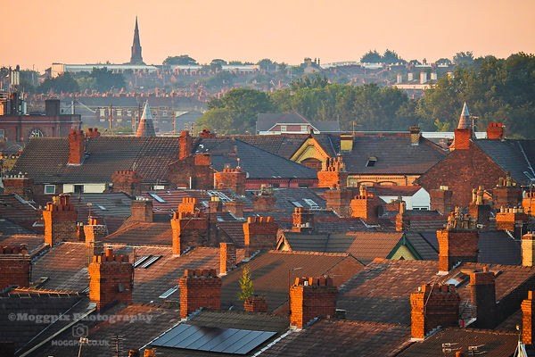 Golden Hour in Wavertree