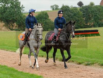 Racehorses training on the gallops